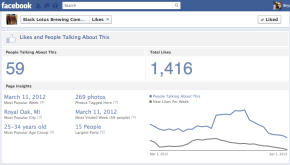 Facebook Timeline Facebook insights for pages